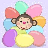 Monkey with eggs Stock Photo