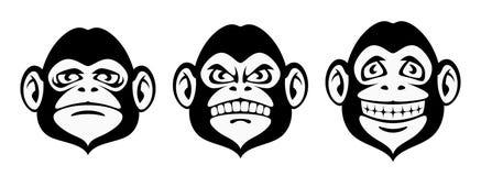 Monkey emotion. On a white background Royalty Free Stock Photography