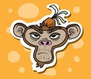 Monkey Face Royalty Free Stock Image