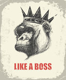 Monkey Face With Like A Boss Inscription Royalty Free Stock Photography