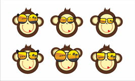 Monkey face in sunglasses Stock Images