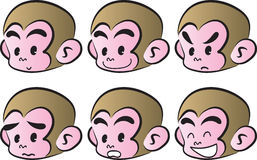 Monkey face Royalty Free Stock Photos