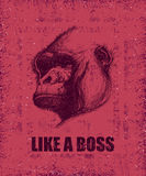 Monkey Face With Like A Boss Inscription Royalty Free Stock Photos
