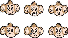 Monkey Faces Royalty Free Stock Photo