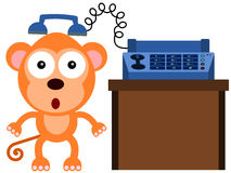 Monkey fax Stock Photos