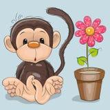 Monkey with flower Stock Photos