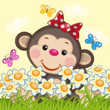 Monkey and flowers. Cute Monkey, flowers and butterflies Stock Photo