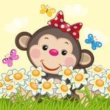 Monkey and flowers Stock Photo