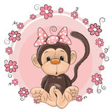 Monkey with flowers Stock Photos