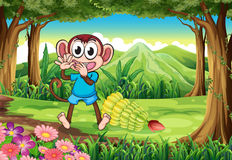A monkey at the forest with bananas Stock Image