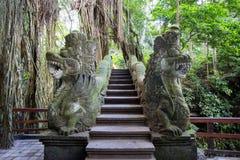 Monkey Forest Bridge Royalty Free Stock Image