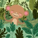 Monkey in the forest scene Stock Image