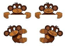 Monkey frame decoration. Various monkeys as frame decoration, as if holding an image Stock Photos