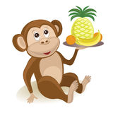 Monkey with fruits Royalty Free Stock Photos