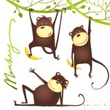Monkey Fun Cartoon Hanging on Vine with Banana Royalty Free Stock Photography