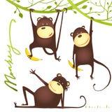 Monkey Fun Cartoon Hanging on Vine with Banana Royalty Free Stock Photography