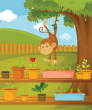 Monkey in the garden Royalty Free Stock Images