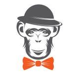 Monkey gentleman in Hat Stock Image