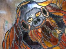 Monkey Gesicht Lizenzfreies Stockfoto