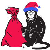 Monkey gives gifts at Christmas and New Year Royalty Free Stock Photo