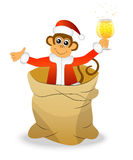 Monkey with a glass of wine in a bag Stock Photos