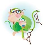 Monkey and glasses Stock Photos
