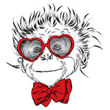 Monkey with glasses and tie. St. Valentine's Day. Vector illustration for greeting card, poster, or print on clothes. Royalty Free Stock Photography