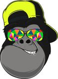 Monkey with glasses. Vectorial illustration, funny monkey with glasses Royalty Free Stock Images