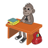 Monkey goes to school Royalty Free Stock Photos