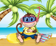 A monkey with goggles at the beach Royalty Free Stock Photography