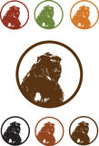 Monkey Gorilla illustration portrait Vector Royalty Free Stock Photography