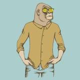 Monkey gorilla vector illustration Stock Photography