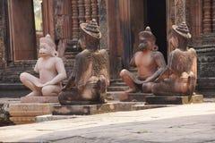 Monkey guardians Royalty Free Stock Image