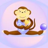 Monkey gymnast Stock Photos