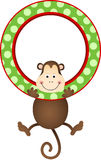 Monkey hanging in a frame Stock Photos