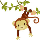 Monkey hanging on a liana. Cute cartoon monkey hanging on a liana. Vector clip art illustration royalty free illustration