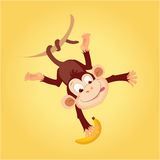 Monkey Hanging On Liana. Flat Bright Color Simplified Vector Illustration In Fun Cartoon Style Design stock illustration