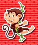 Monkey hanging on the vine Royalty Free Stock Photo