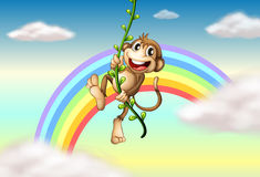 A monkey hanging on a vine plant near the rainbow royalty free illustration