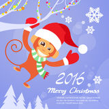 Monkey Happy Smile Wear Santa Hat New Year Sign Royalty Free Stock Images