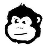Monkey Head Stock Photography