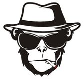 Monkey head smoking Royalty Free Stock Photography