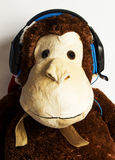 Monkey with headphones Royalty Free Stock Photos