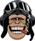Monkey in helmet pilot. Vector illustration, a chimpanzees head in a pilot& x27;s helmet, smokes a cigar and smiles royalty free illustration