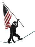 Monkey Holding Flag Royalty Free Stock Image