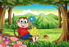 A monkey holding a flower while sitting in the middle of the for Royalty Free Stock Image