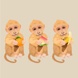 Monkey holding an orange, peach and banana. Chinese new year stock image