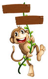 A monkey holding the two wooden signboards Royalty Free Stock Photo