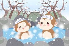 Monkey with hot spring Stock Image