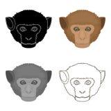Monkey icon in cartoon style  on white background. Realistic animals symbol stock vector illustration. Stock Photos